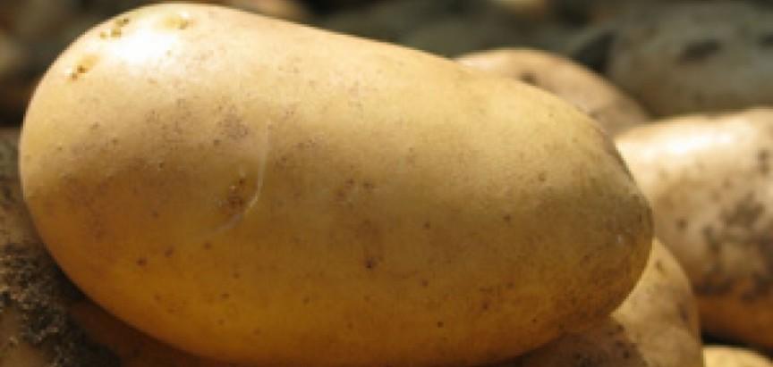 Fra Đokin krumpir kilaš