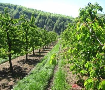 Studijsko putovanje proizvođača voća i poljoprivrednih savjetodavaca
