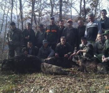 Foto:Lovačka sekcija Lug u subotu ulovila 4 divlje svinje