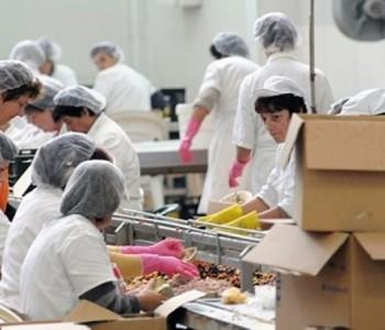 U BiH industrijska proizvodnja u veljači porasla za 0,6 posto