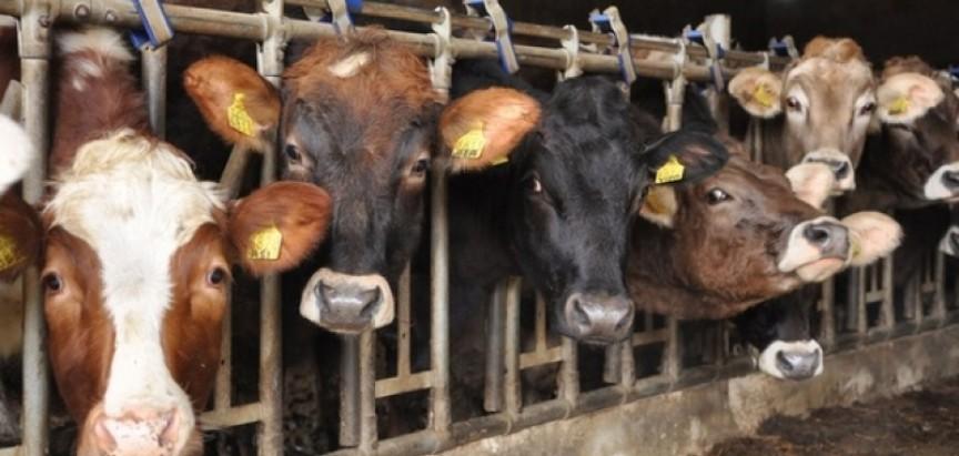 Odluka o potpori osnivanju i razvoju malih stočarskih farmi