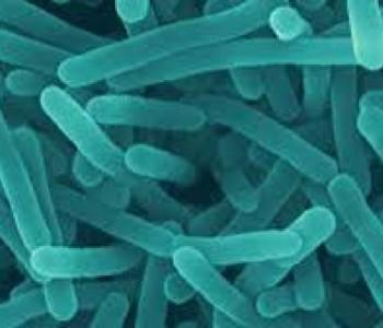 Iznimno rijetka bakterija stigla u Hrvatsku: U dva tjedna umrle dvije bebe!