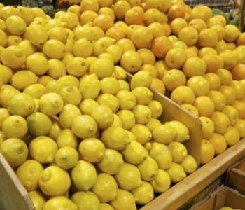 Budite jako oprezni – Užasnut ćete se kada doznate zašto je limun drastično pojeftinio