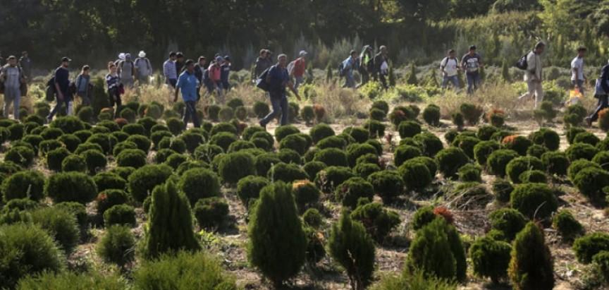 Izbjeglice gurnule Hrvatsku i Srbiju u hladni rat
