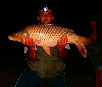 U Ramskom jezeru ulovljen šaran od 14,5 kg