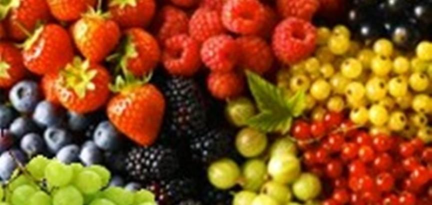 Aplikanati koji su ispunili kriterije po javom pozivu za  podizanje nasada jagodičastog voća