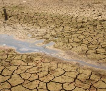 Kalifornijom hara suša, zemlja uvela izvanredne mjere štednje